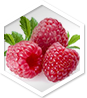 Raspberry Ketone MD ingredient 1